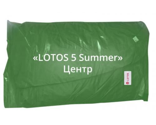 Внешний тент от LOTOS 5 Summer